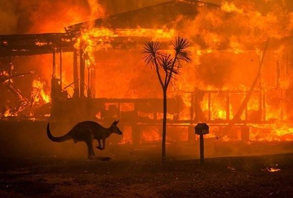 Bushfires in South Australia 2020